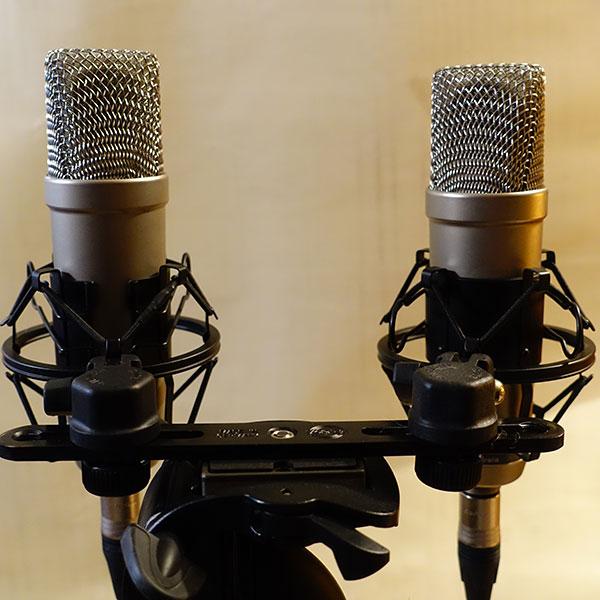 NUDE 251 Clone - NUDE Microphones